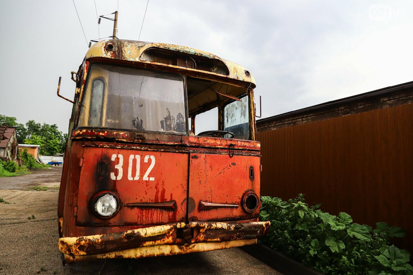 В Запорожье на месте зеленхоза одного из заводов появится Музей специального транспорта, - ФОТОРЕПОРТАЖ, фото-15