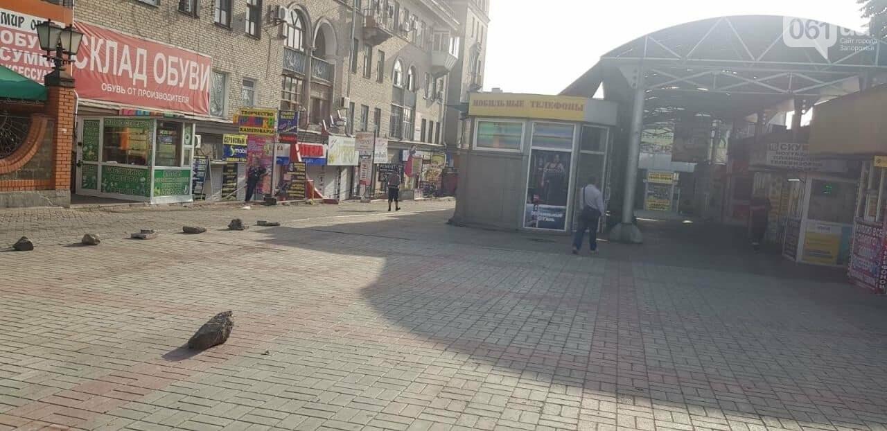 В Запорожье на Центральном рынке демонтировали 20 незаконных павильонов, - ФОТО , фото-1