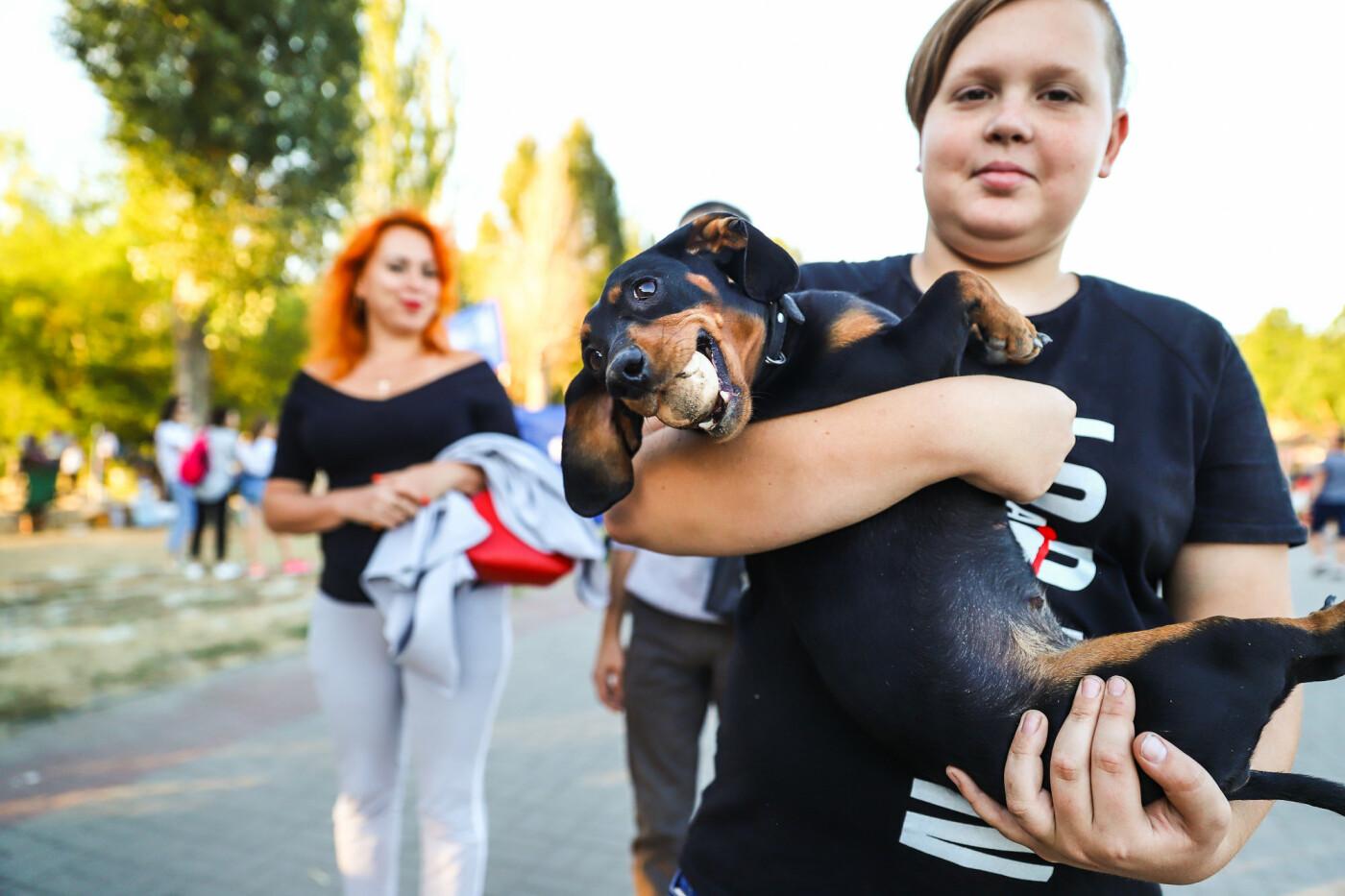 ЛГБТ-прайд, эко-митинг и восстановленные скульптуры в сквере Пионеров: сентябрь в фотографиях , фото-31