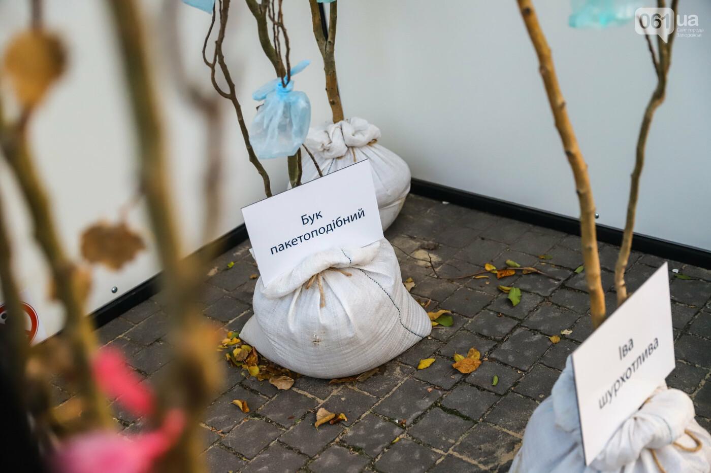 Огромная стиральная машина и комната из фольги: в центре Запорожья открылась эко-выставка, - ФОТОРЕПОРТАЖ , фото-16