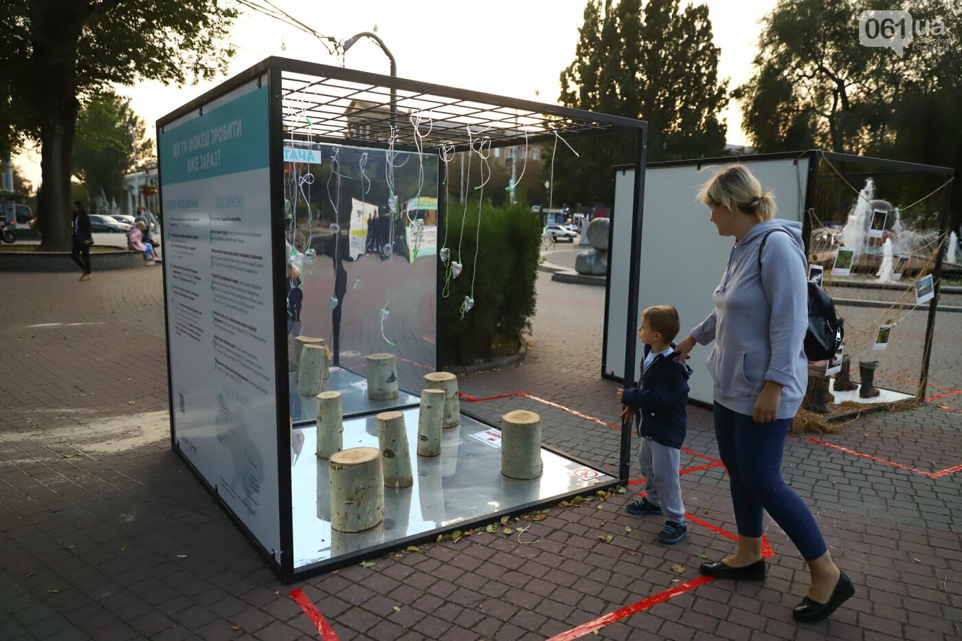 Огромная стиральная машина и комната из фольги: в центре Запорожья открылась эко-выставка, - ФОТОРЕПОРТАЖ , фото-19