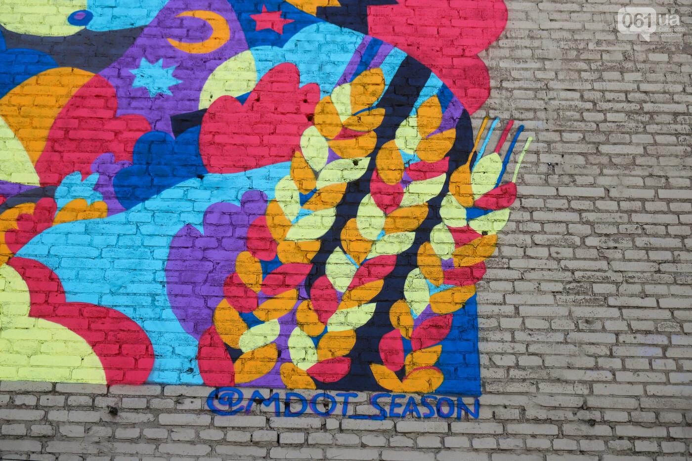 Художник из Нью-Йорка нарисовал мурал к 250-летию Запорожья - ФОТОРЕПОРТАЖ , фото-19