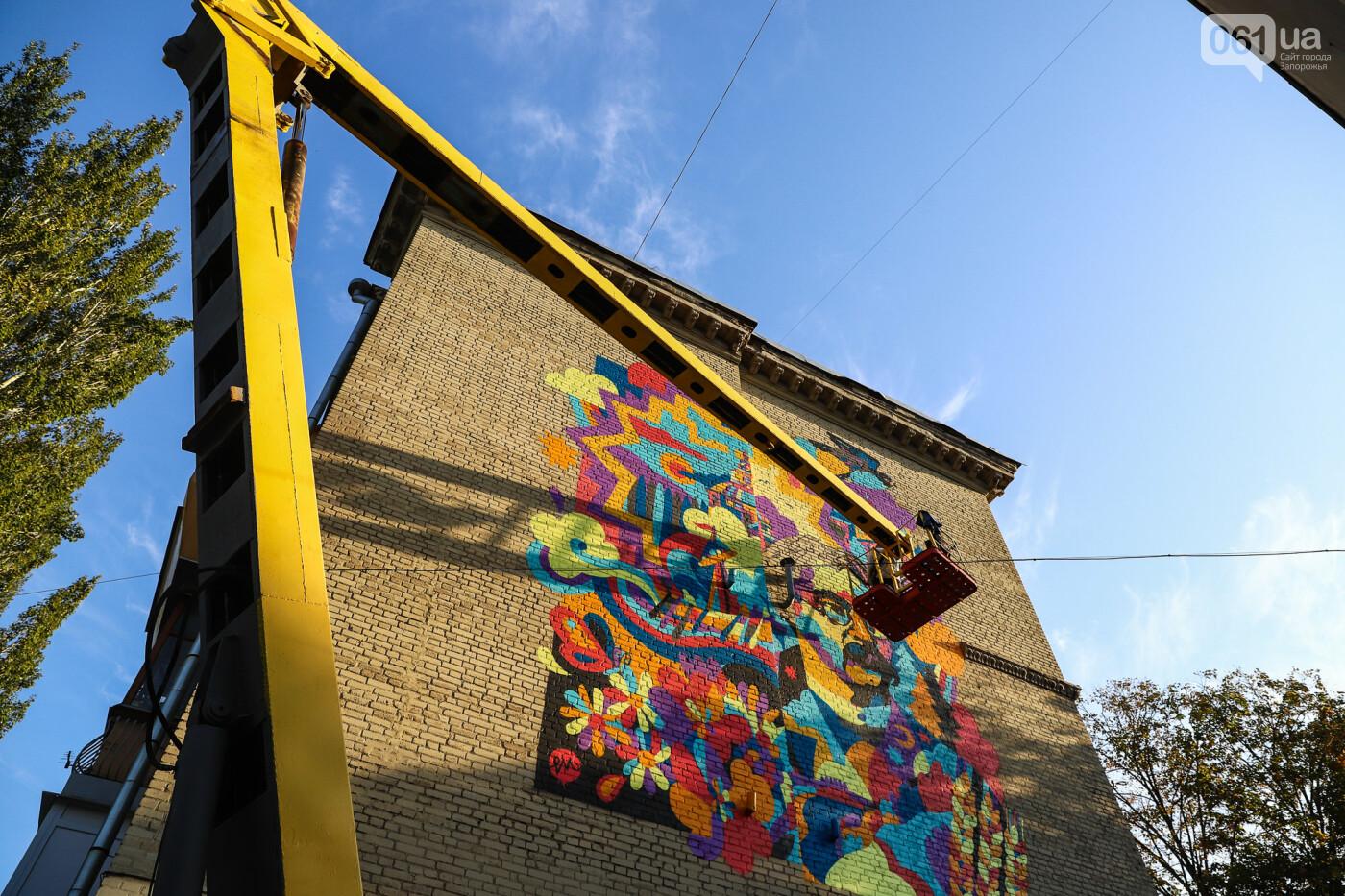 Художник из Нью-Йорка нарисовал мурал к 250-летию Запорожья - ФОТОРЕПОРТАЖ , фото-23