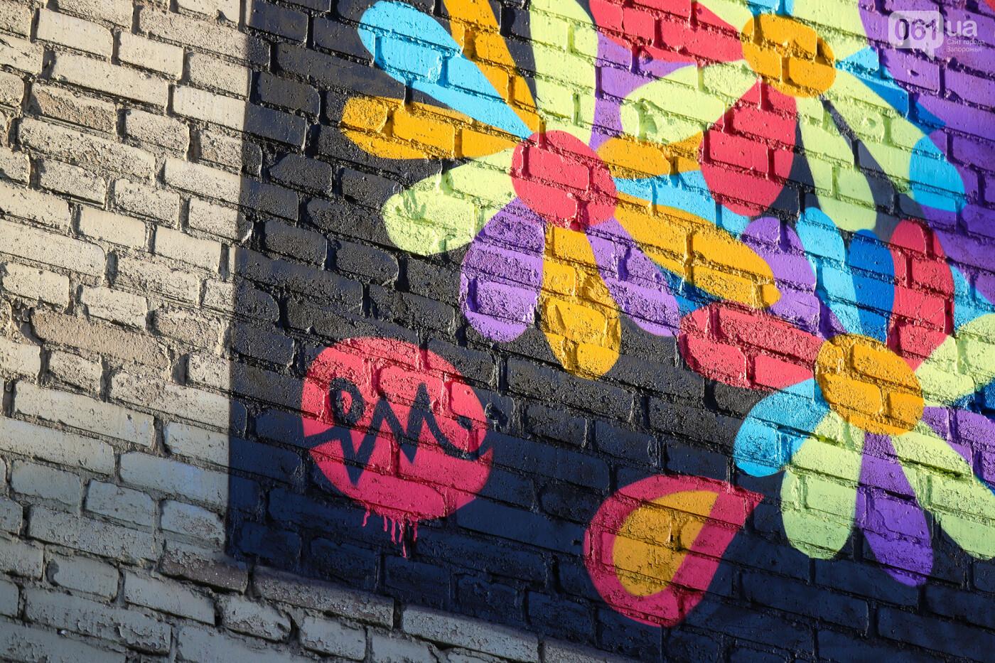 Художник из Нью-Йорка нарисовал мурал к 250-летию Запорожья - ФОТОРЕПОРТАЖ , фото-18