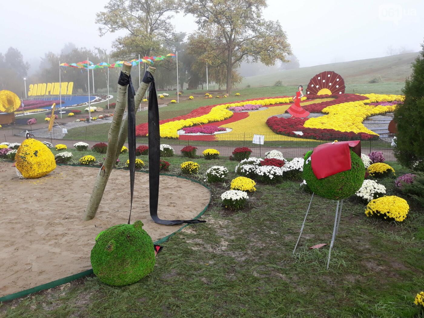 20201015083126 scaled 5f8814add0941 - Запорожцы повредили цветочные композиции в Вознесеновском парке, - ФОТО