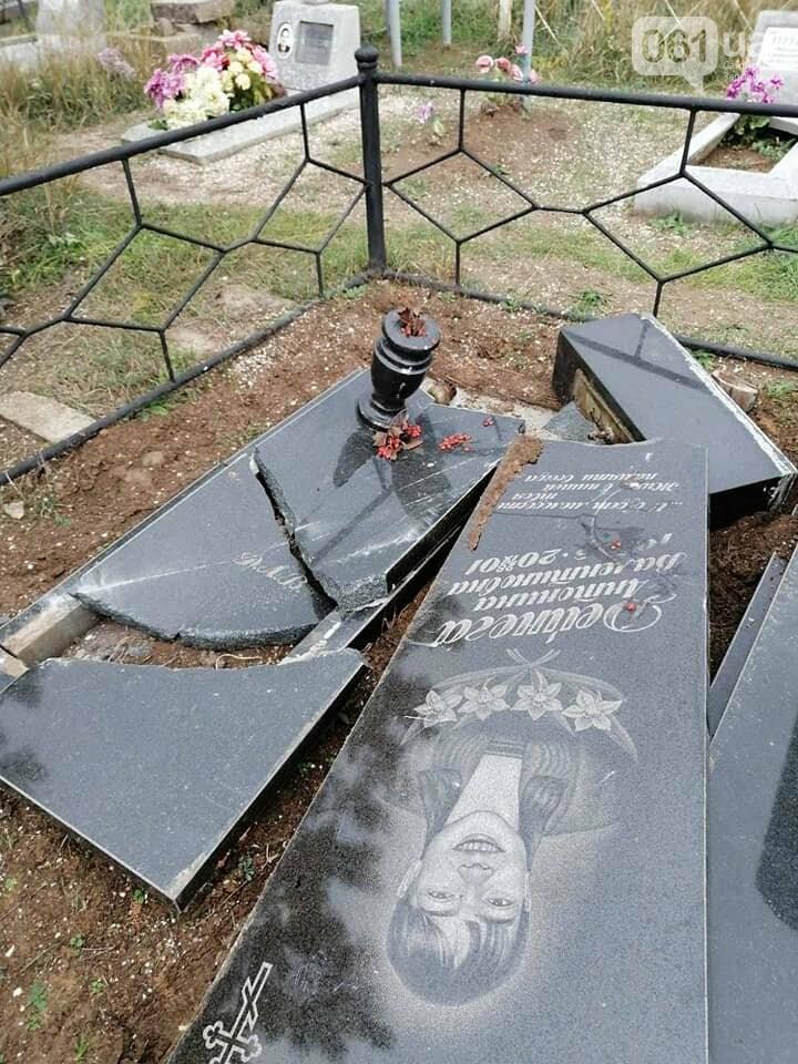 1232478344484358727934625194585195701114114n 5fa11f66d67bd - В полиции разыскивают вандалов, которые разбили 14 памятников на кладбище в Приморске