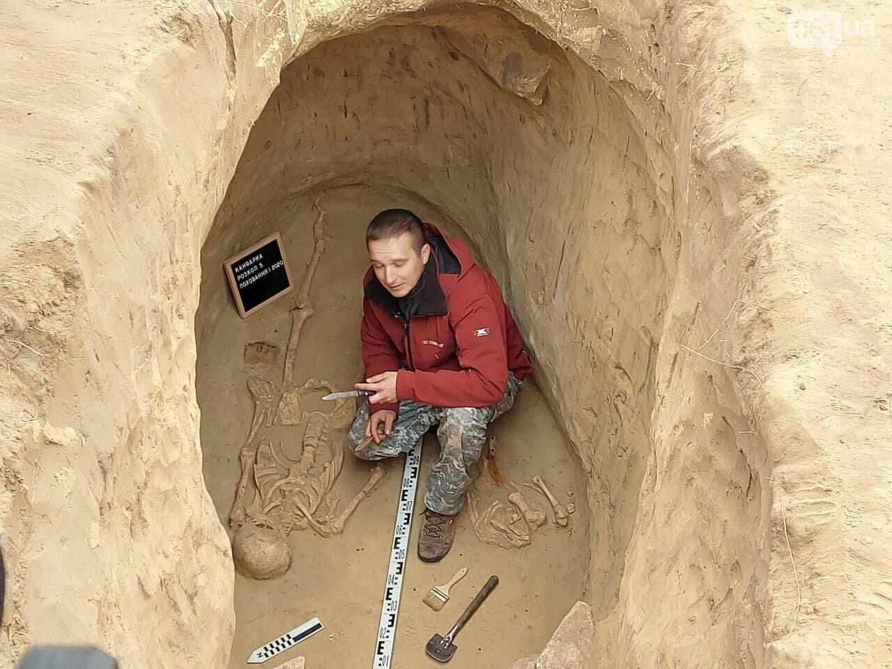 В Запорожье на Хортице нашли захоронение скифского воина, которому 2500 лет, - ФОТОРЕПОРТАЖ, фото-3
