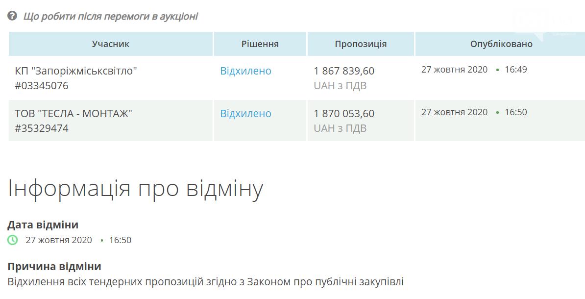 В Запорожье на монтаж и демонтаж новогодних гирлянд и покупку украшений потратят 1,8 миллиона гривен, фото-3
