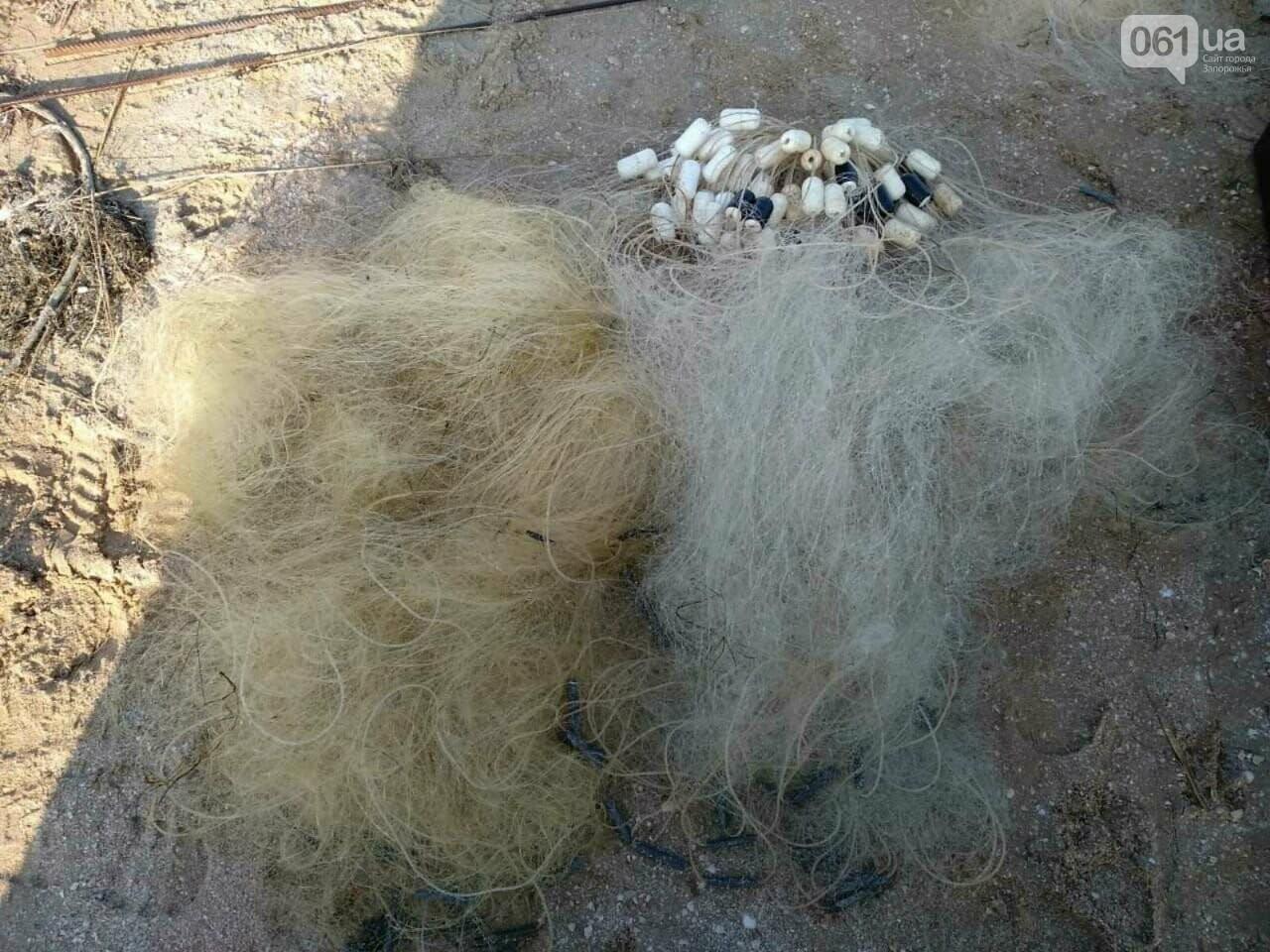 Камбала Глосса в браконьерских сетях