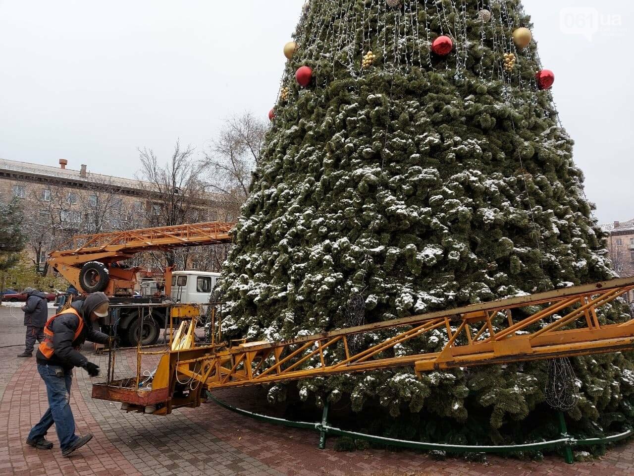 Новые игрушки для елки и обустройство новогоднего городка в центре Запорожья обойдется бюджету в 284 тысячи гривен, - ФОТОРЕПОРТАЖ , фото-5