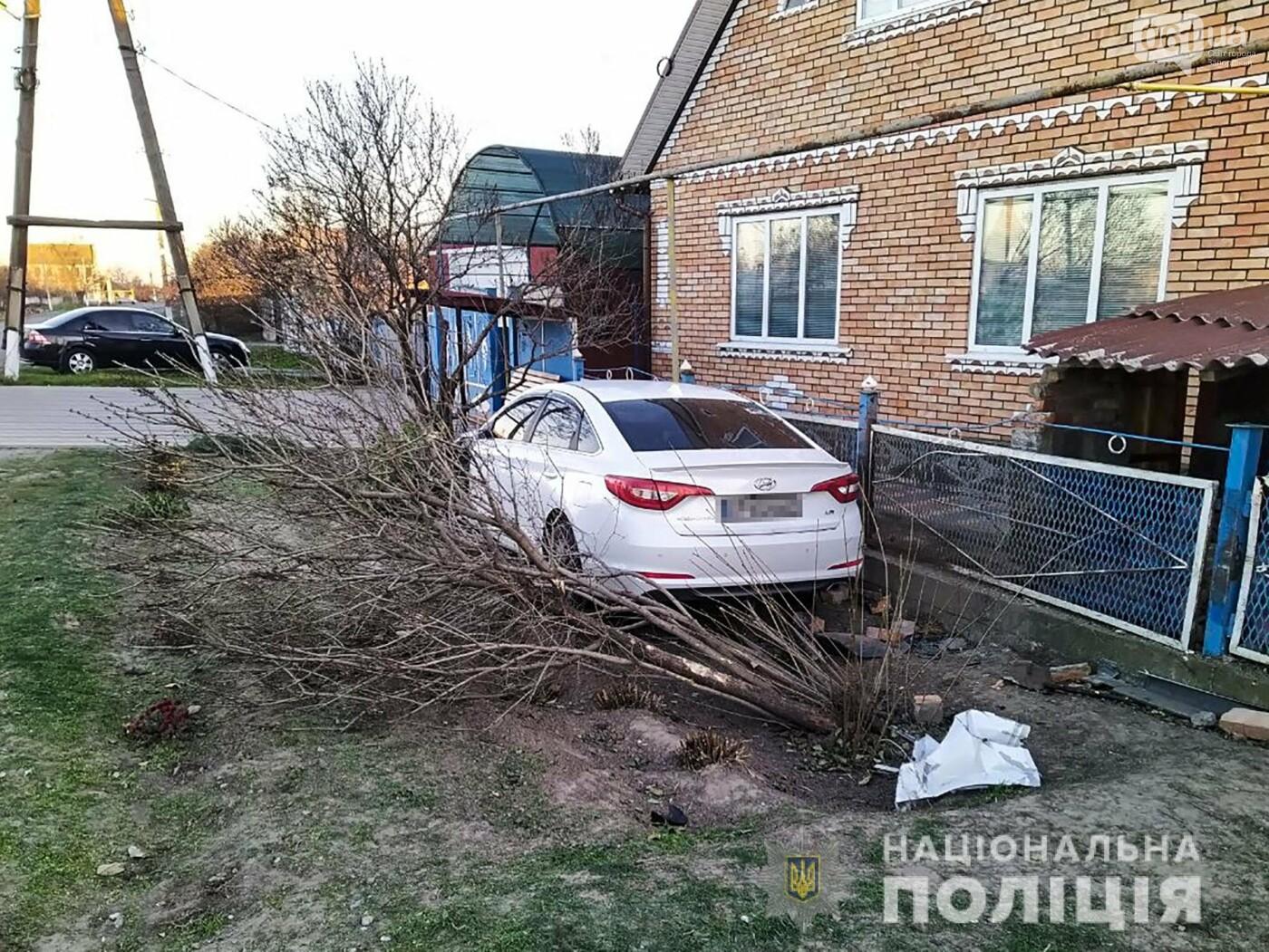 В Запорожской области выпивший мужчина угнал автомобиль и попал на нем в ДТП, фото-2