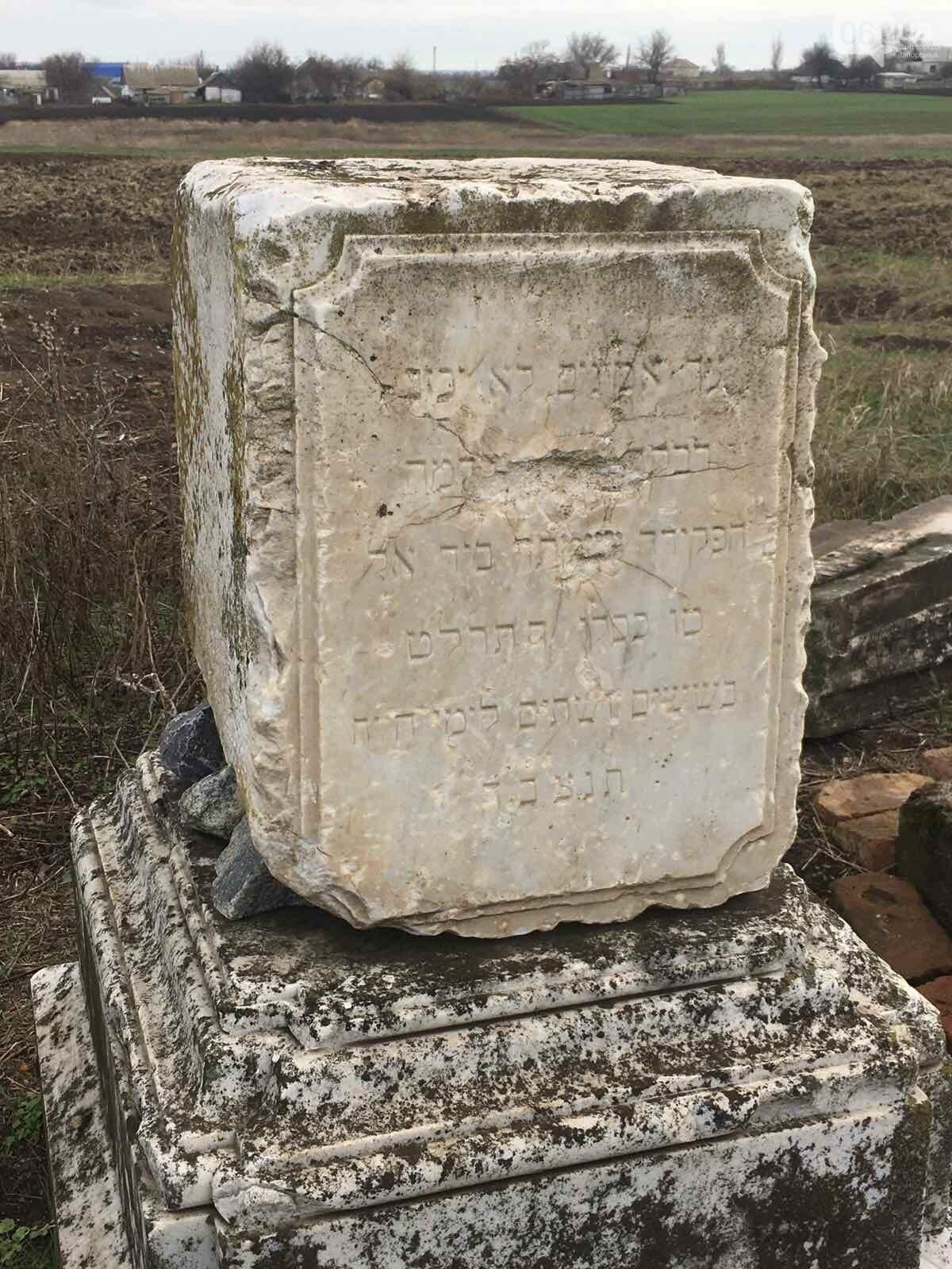 Урожай на костях: в Гуляйполе фермер распахал еврейское кладбище, - ФОТО, фото-10