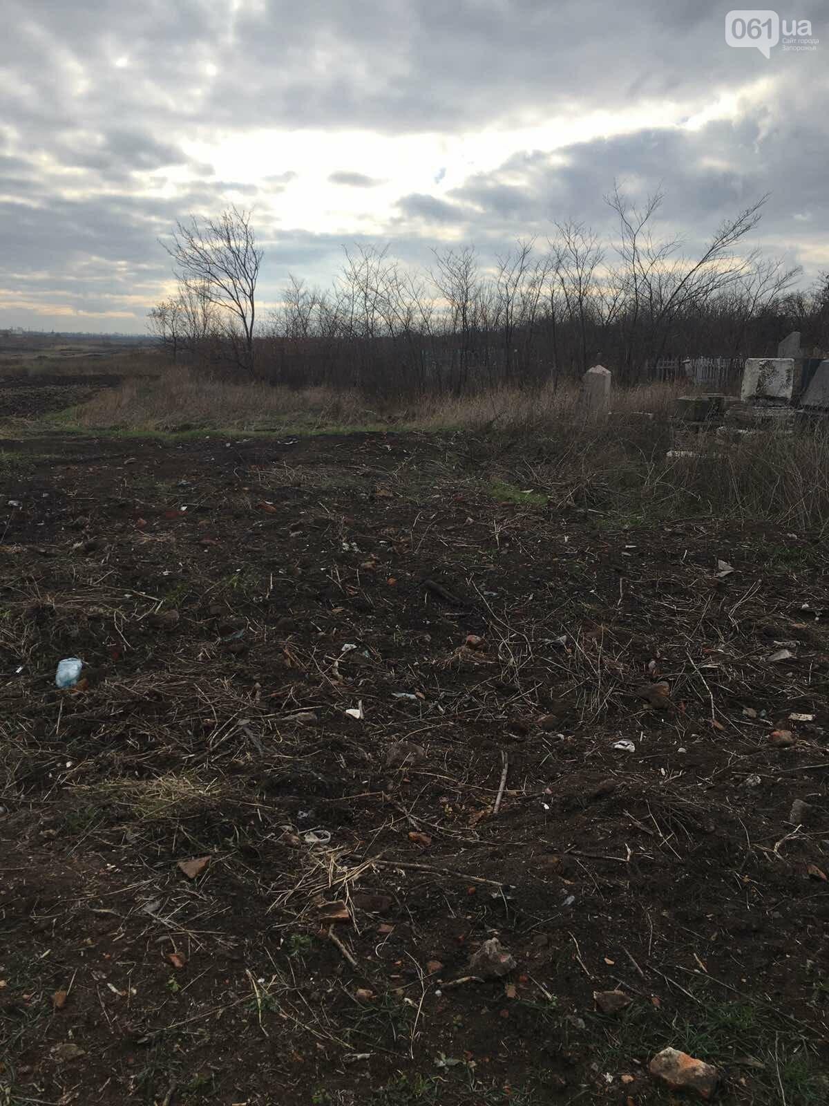 Урожай на костях: в Гуляйполе фермер распахал еврейское кладбище, - ФОТО, фото-7