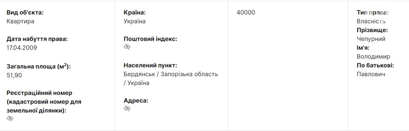 Экс-мэр Бердянска Владимир Чепурной задекларировал перед увольнением доход почти в миллион гривен, фото-2