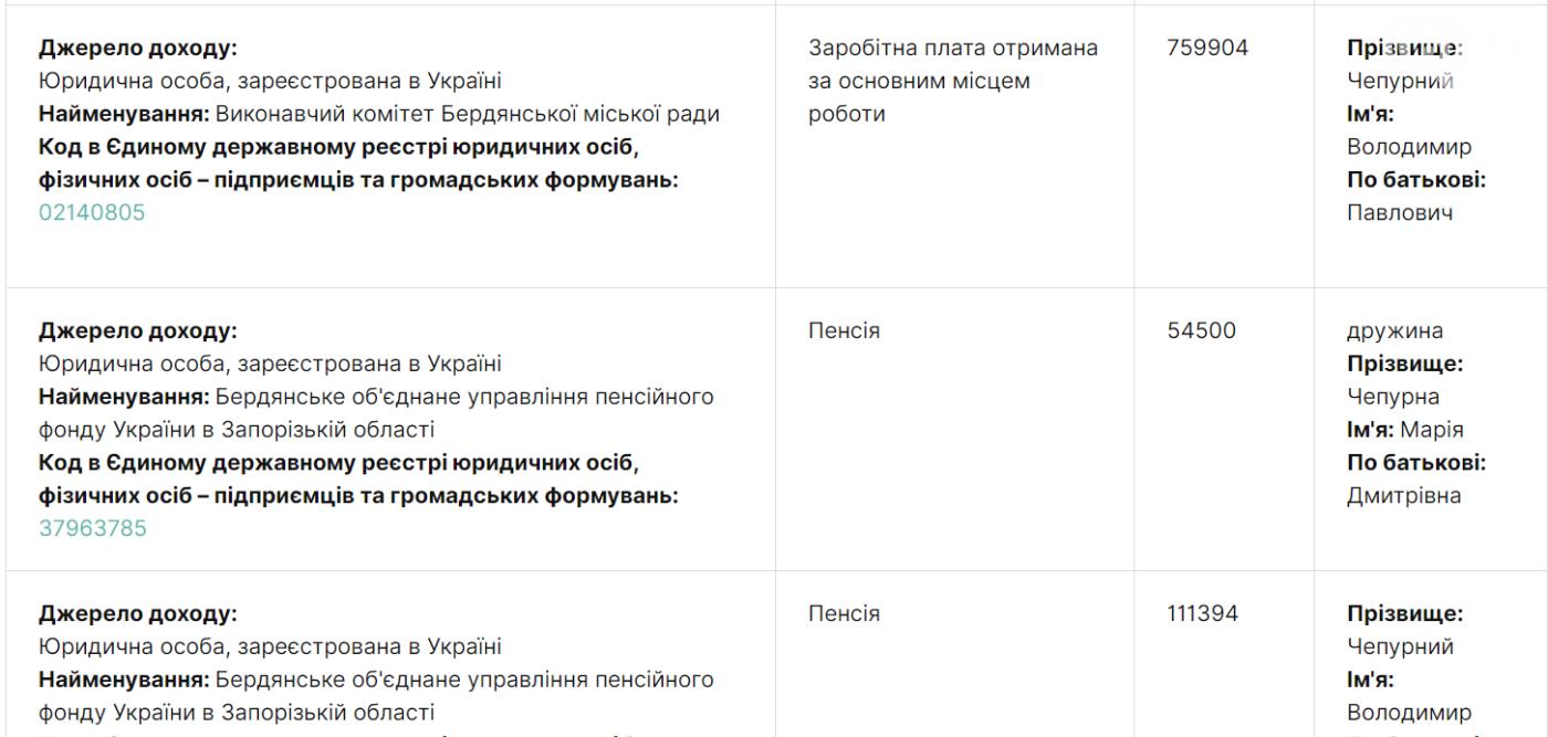 Экс-мэр Бердянска Владимир Чепурной задекларировал перед увольнением доход почти в миллион гривен, фото-1