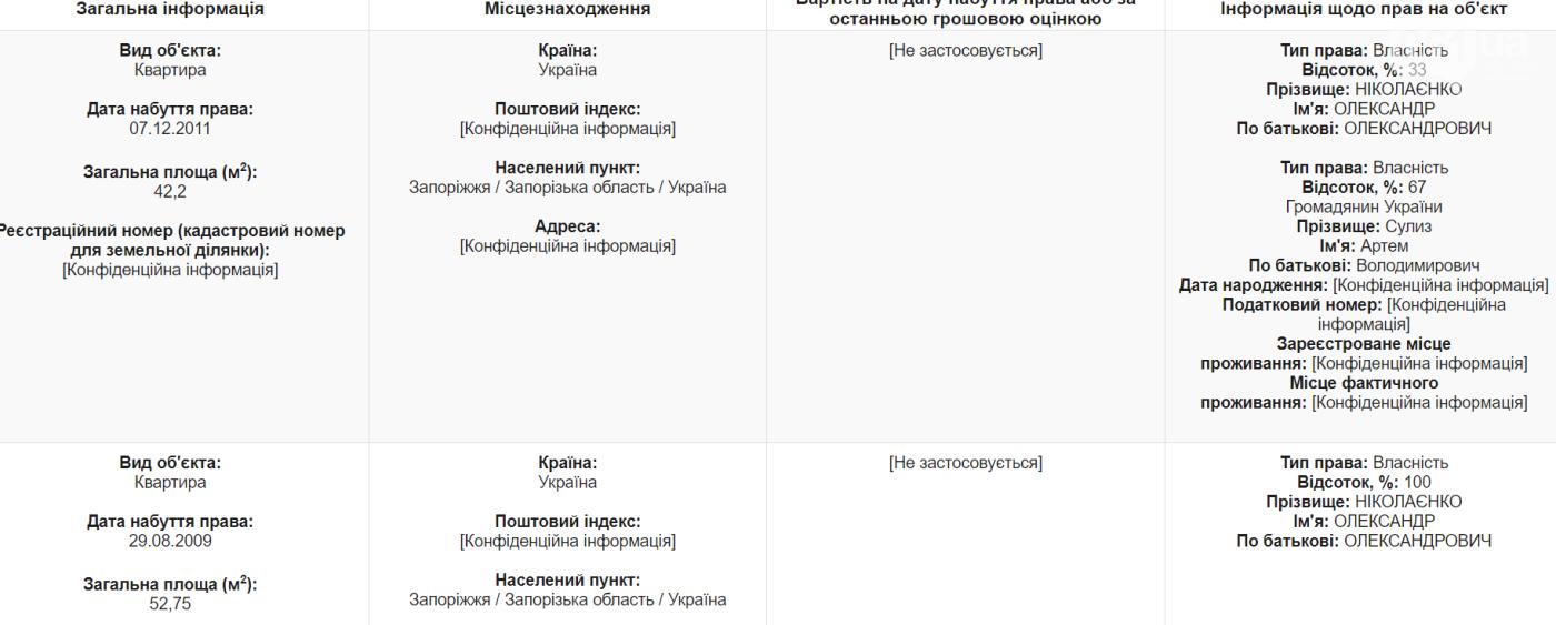 Экс-депутат и глава Вознесеновского района задекларировал доход семьи в треть миллиона гривен, фото-2