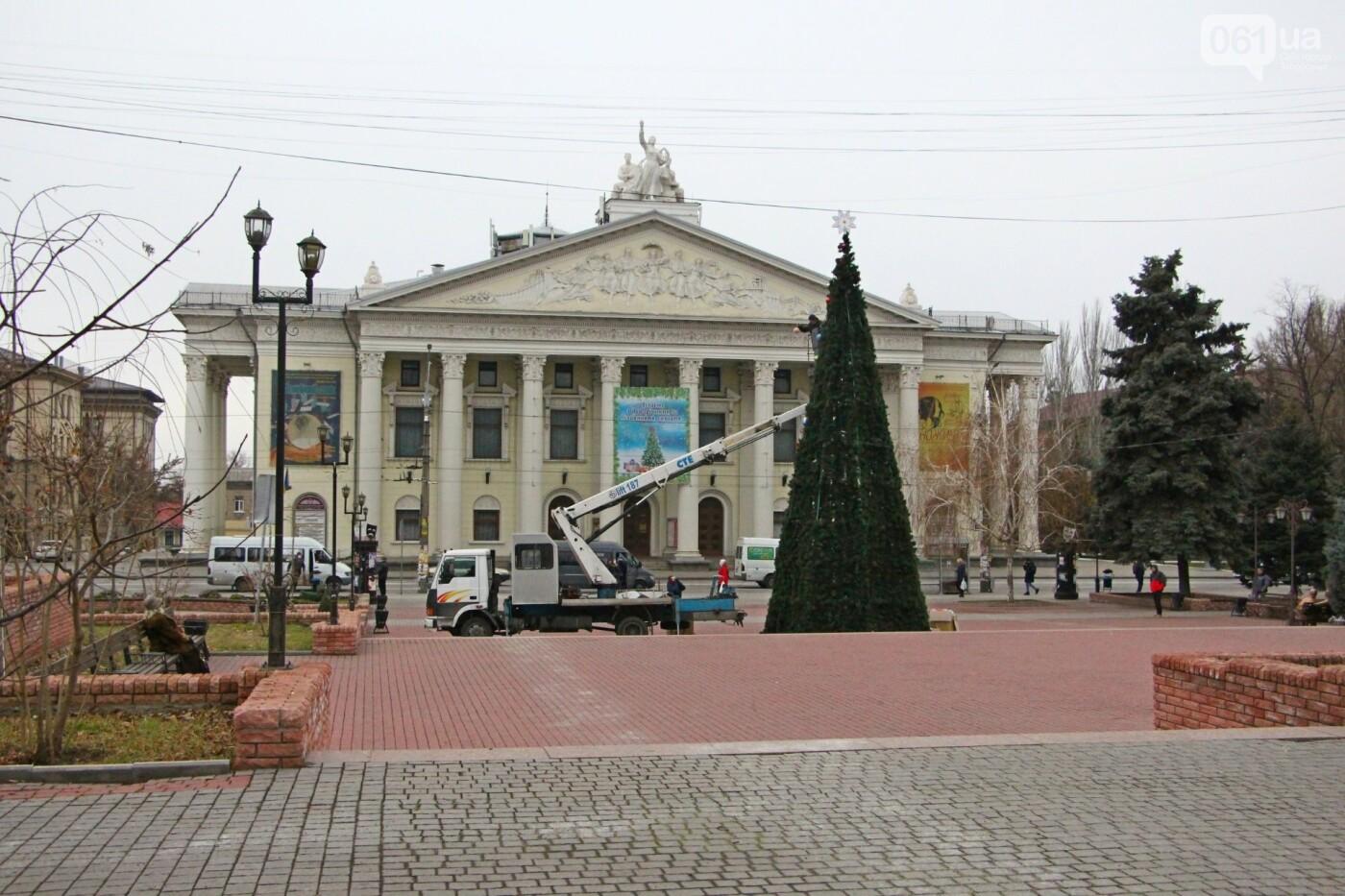 В Запорожье в сквере Театральном установили 12-метровую елку, фото-4