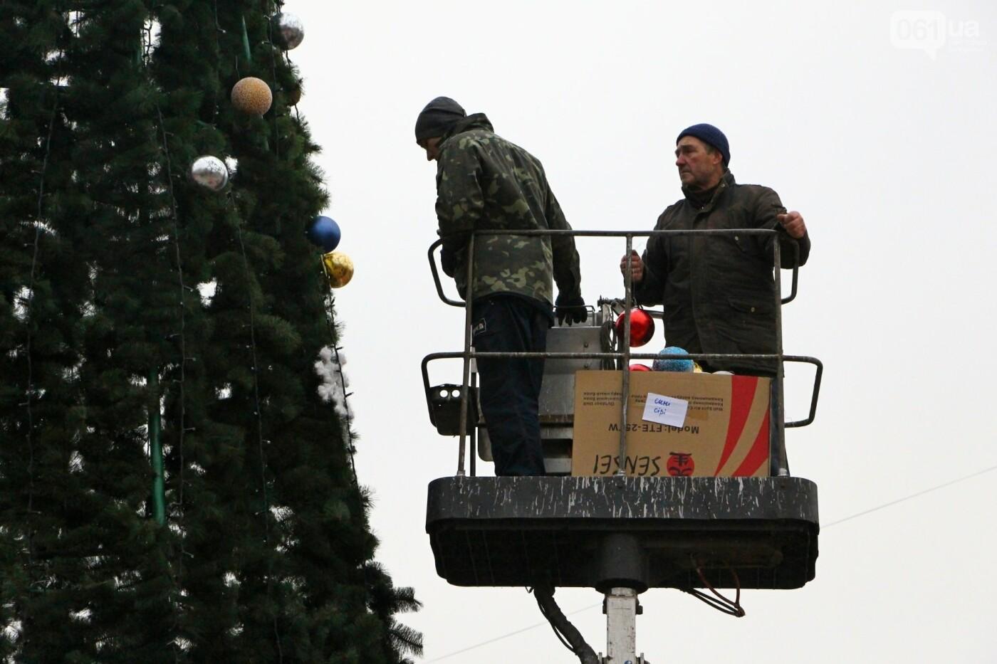 В Запорожье в сквере Театральном установили 12-метровую елку, фото-1