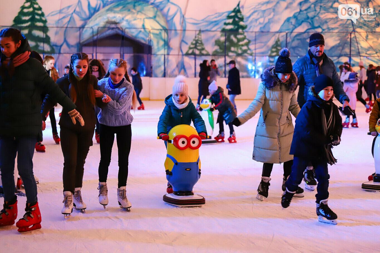 Где в Запорожье покататься на коньках: график, цены, локации , фото-1