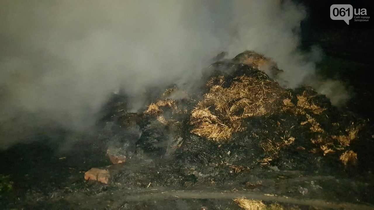 В Запорожской области горело  700 тюков сена, - ФОТОРЕПОРТАЖ , фото-1