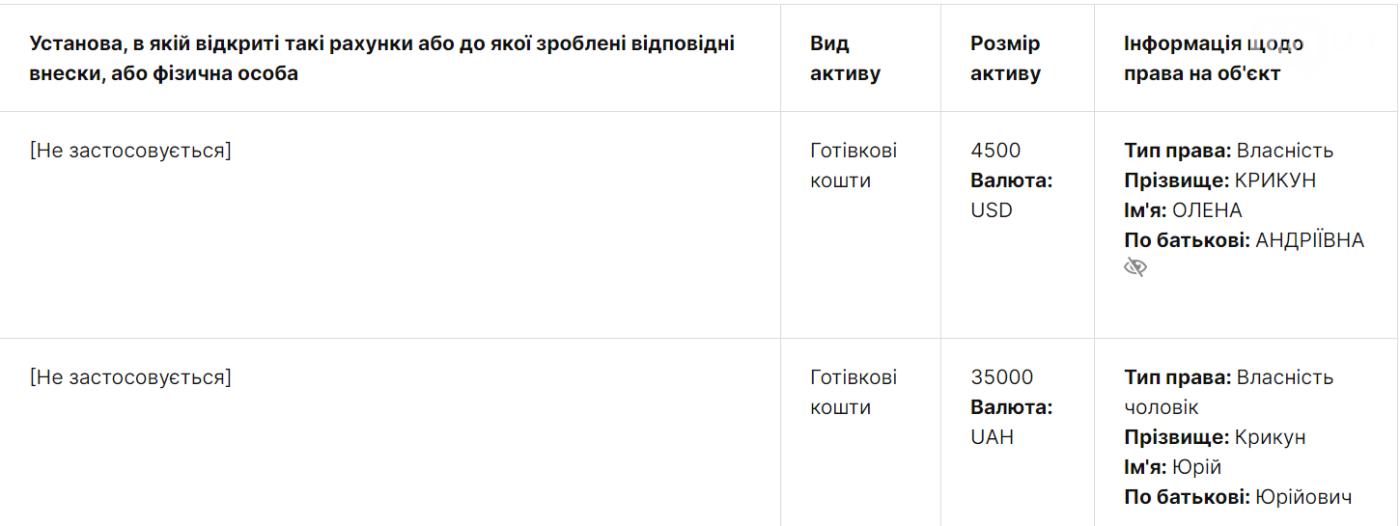 Депутатка Запорожского облсовета и студентка задекларировала недвижимость в Киеве и зарплату мужа в аппарате ВРУ, фото-2