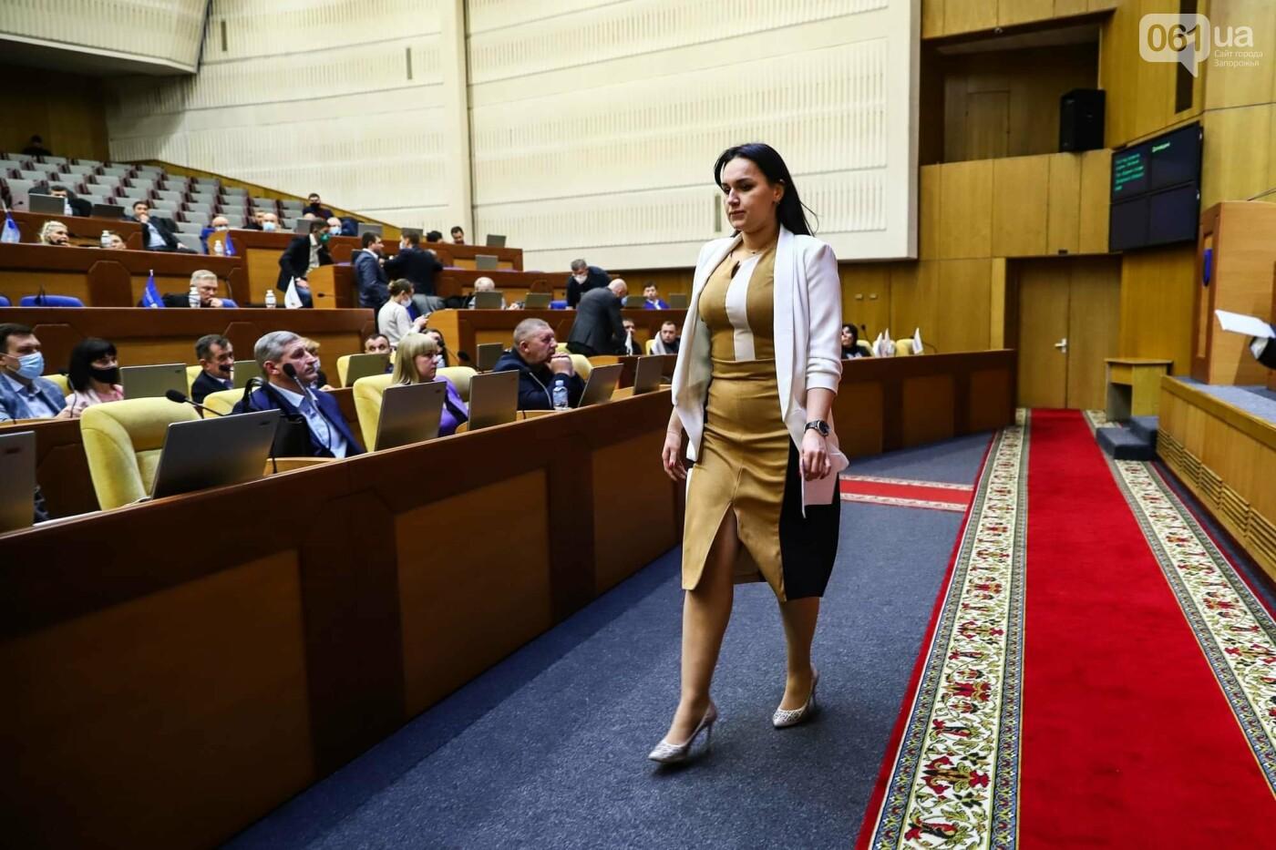 Глава Запорожского облсовета подал в отставку  , фото-9