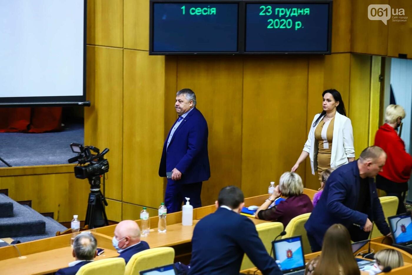 Глава Запорожского облсовета подал в отставку  , фото-1