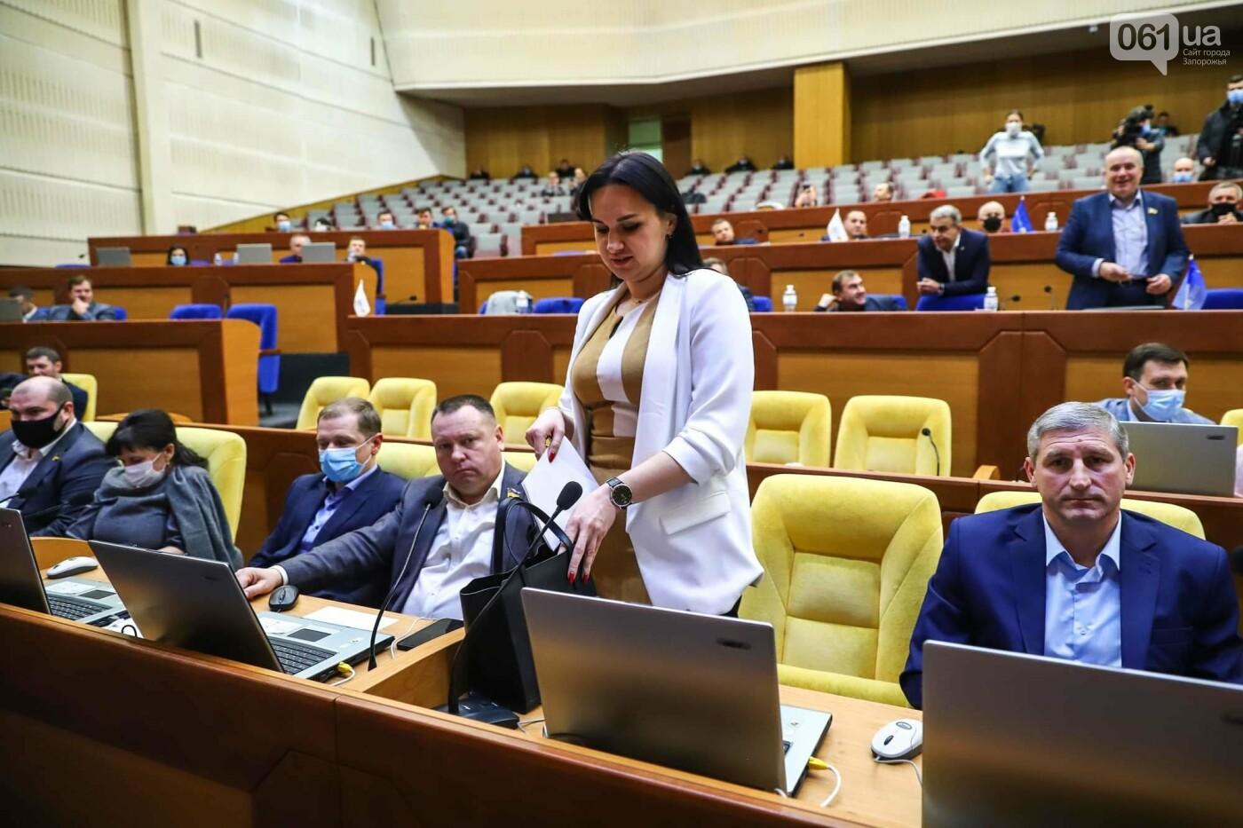Глава Запорожского облсовета подал в отставку  , фото-7