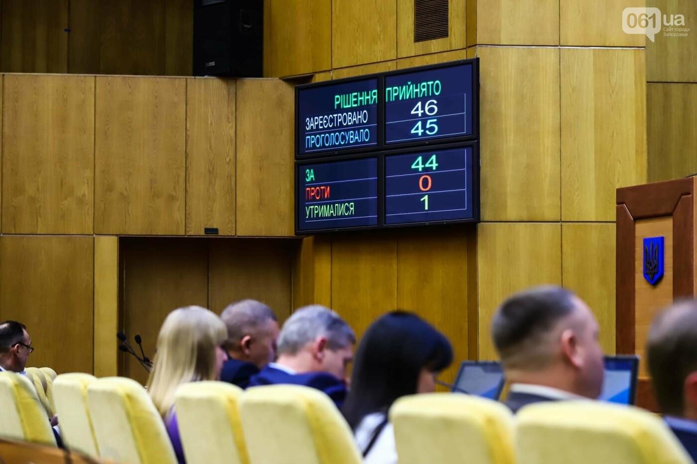 Глава Запорожского облсовета подал в отставку  , фото-4