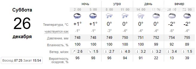 На выходных в Запорожье ожидаются дожди и мокрый снег: предупреждают о гололедице, фото-1