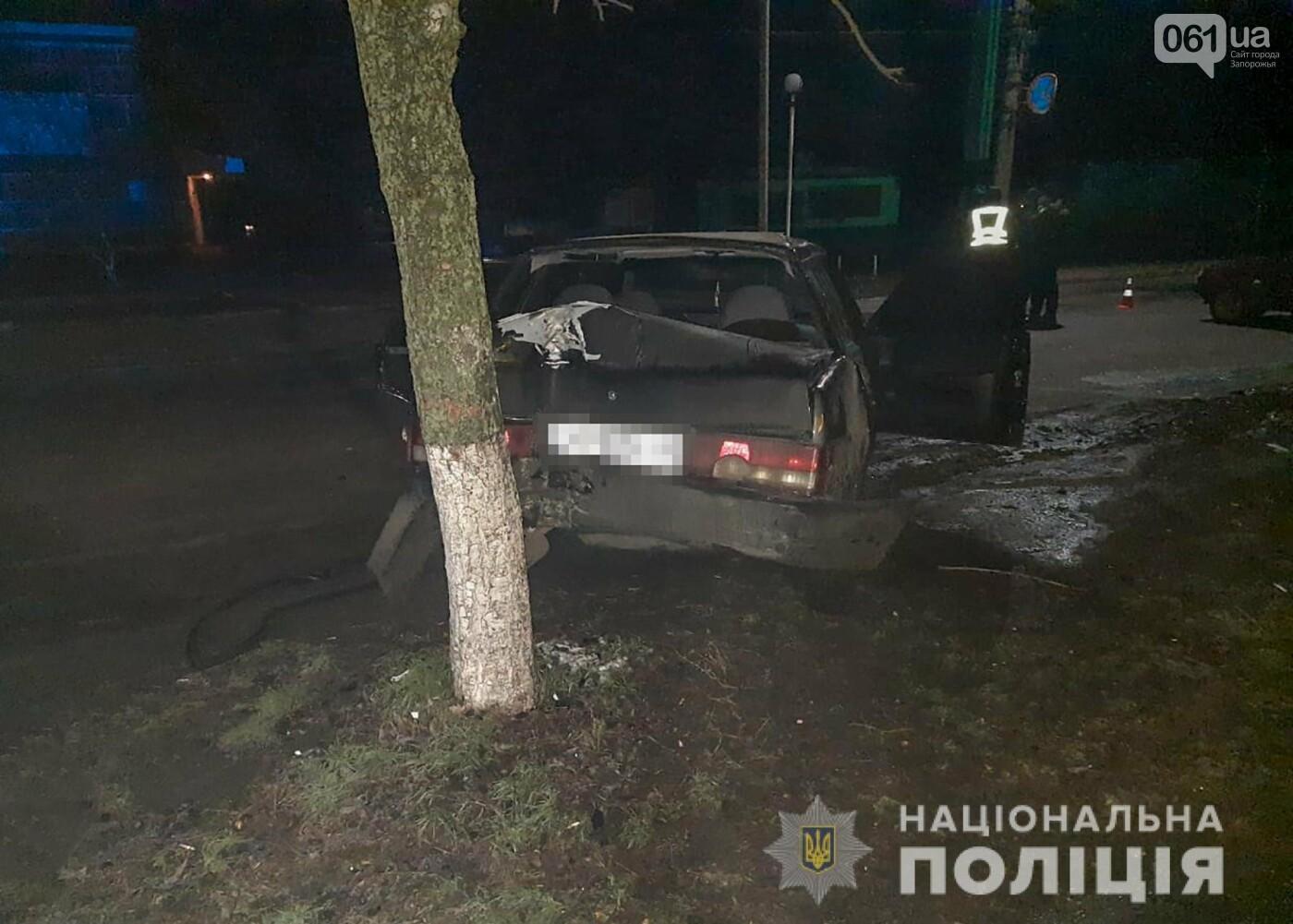 В Запорожской области пьяный водитель ВАЗа насмерть сбил велосипедистку, фото-2