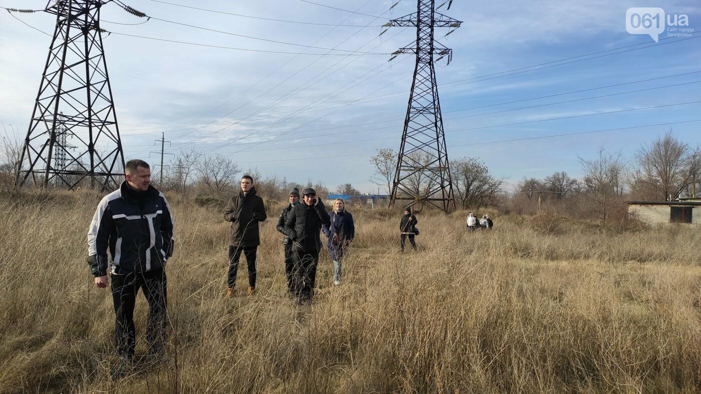В Запорожье десятки волонтеров ищут потерявшегося мопса, который испугался новогодних салютов , фото-1
