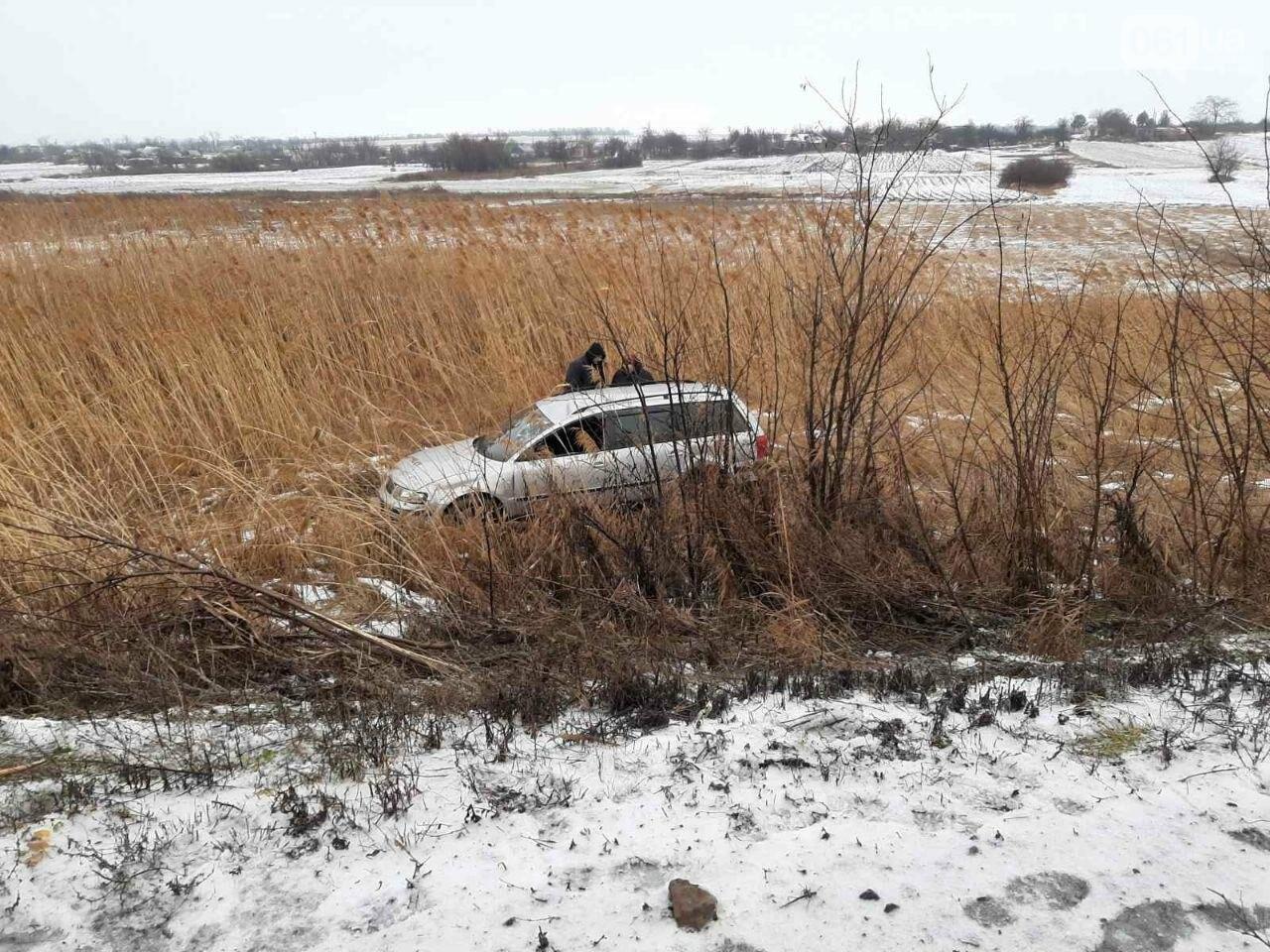 В Запорожской области Volkswagen слетел с трассы в кювет, - ФОТО, фото-1