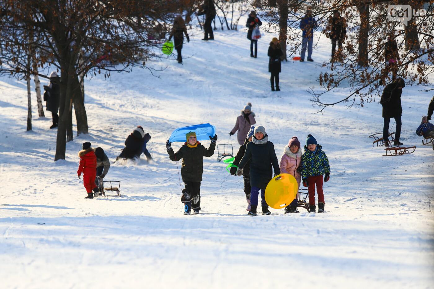 На санках, лыжах и сноуборде: запорожцы устроили массовое катание с горок в Вознесеновском парке, - ФОТОРЕПОРТАЖ, фото-74