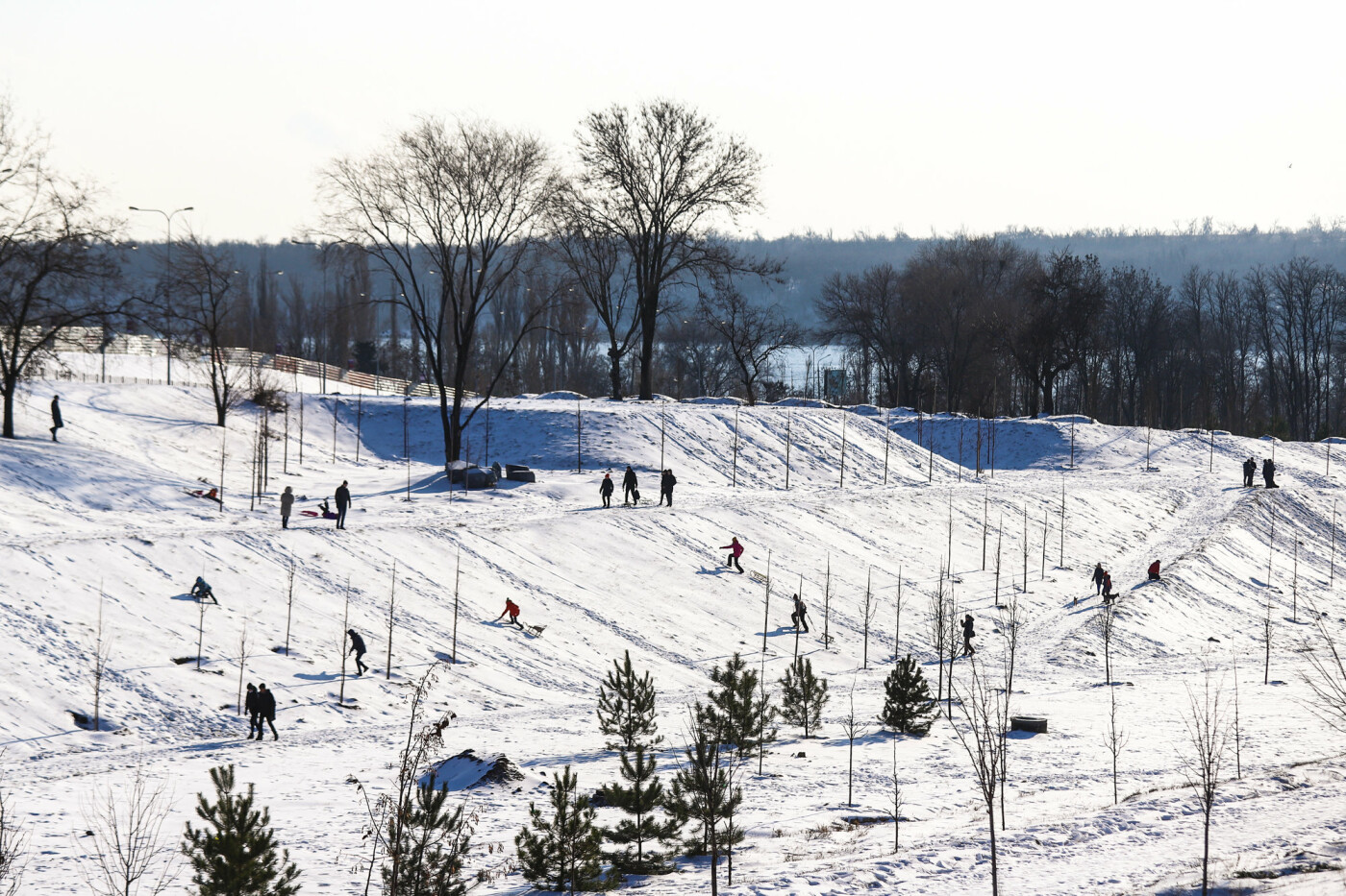 На санках, лыжах и сноуборде: запорожцы устроили массовое катание с горок в Вознесеновском парке, - ФОТОРЕПОРТАЖ, фото-2
