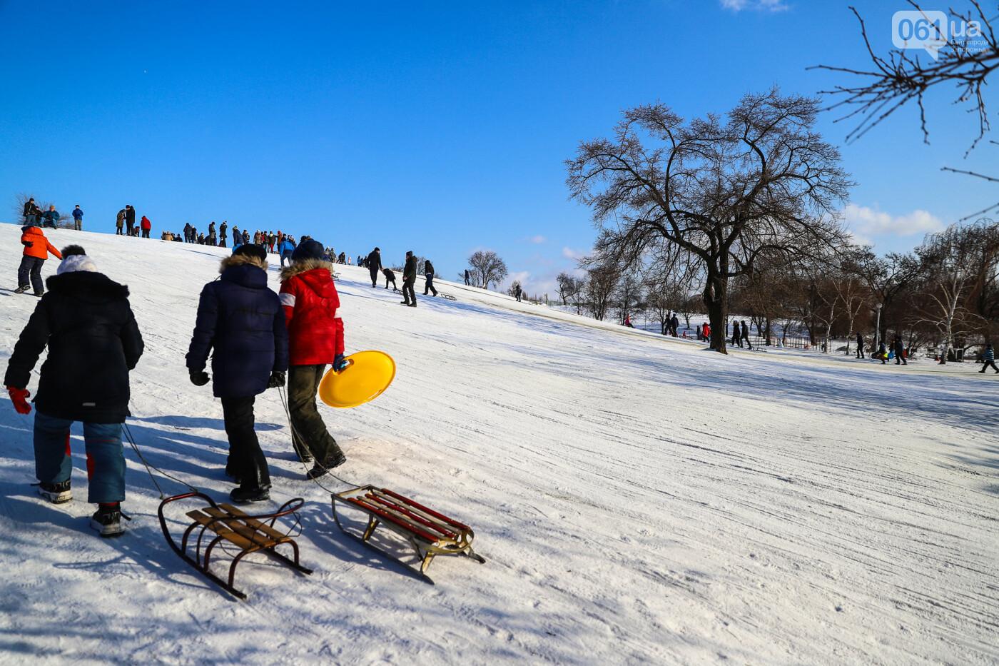 На санках, лыжах и сноуборде: запорожцы устроили массовое катание с горок в Вознесеновском парке, - ФОТОРЕПОРТАЖ, фото-91