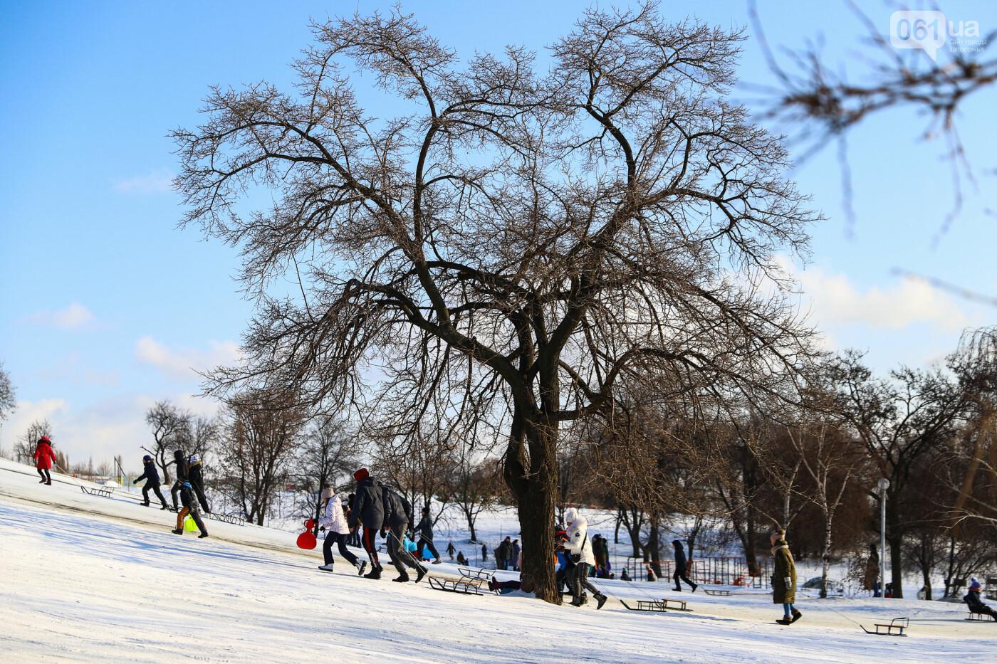 На санках, лыжах и сноуборде: запорожцы устроили массовое катание с горок в Вознесеновском парке, - ФОТОРЕПОРТАЖ, фото-92