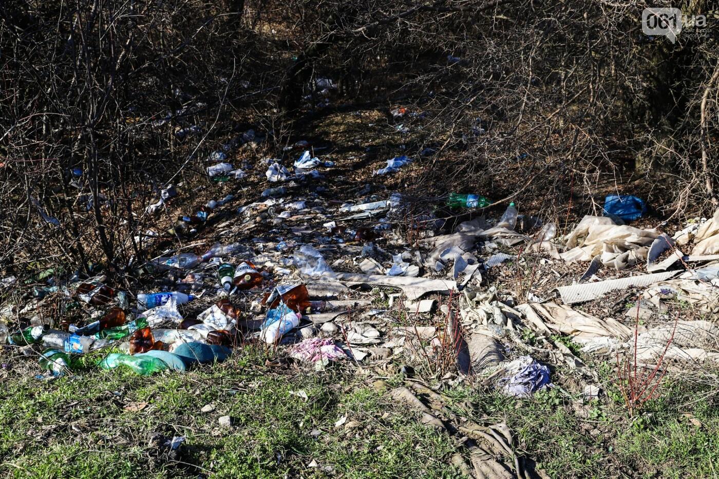 Цветущие крокусы и горы мусора: как сейчас выглядит балка Партизанская в Запорожье, - ФОТО, фото-17