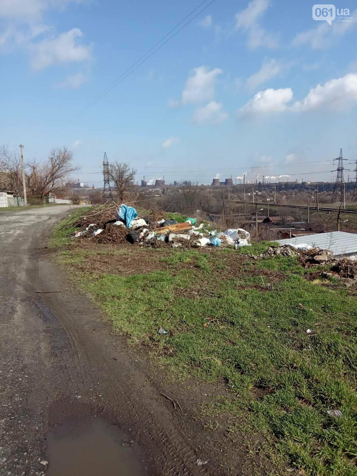 В Запорожье оштрафуют водителя грузовика, который вывез строительный мусор на стихийную свалку , фото-4