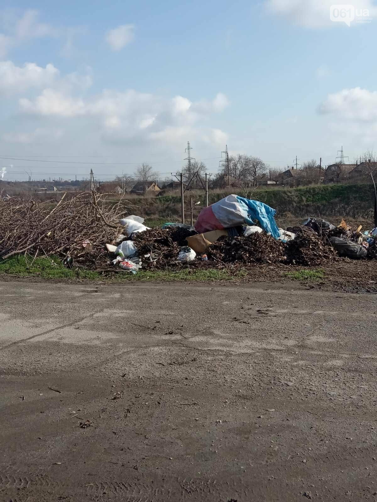 В Запорожье оштрафуют водителя грузовика, который вывез строительный мусор на стихийную свалку , фото-3