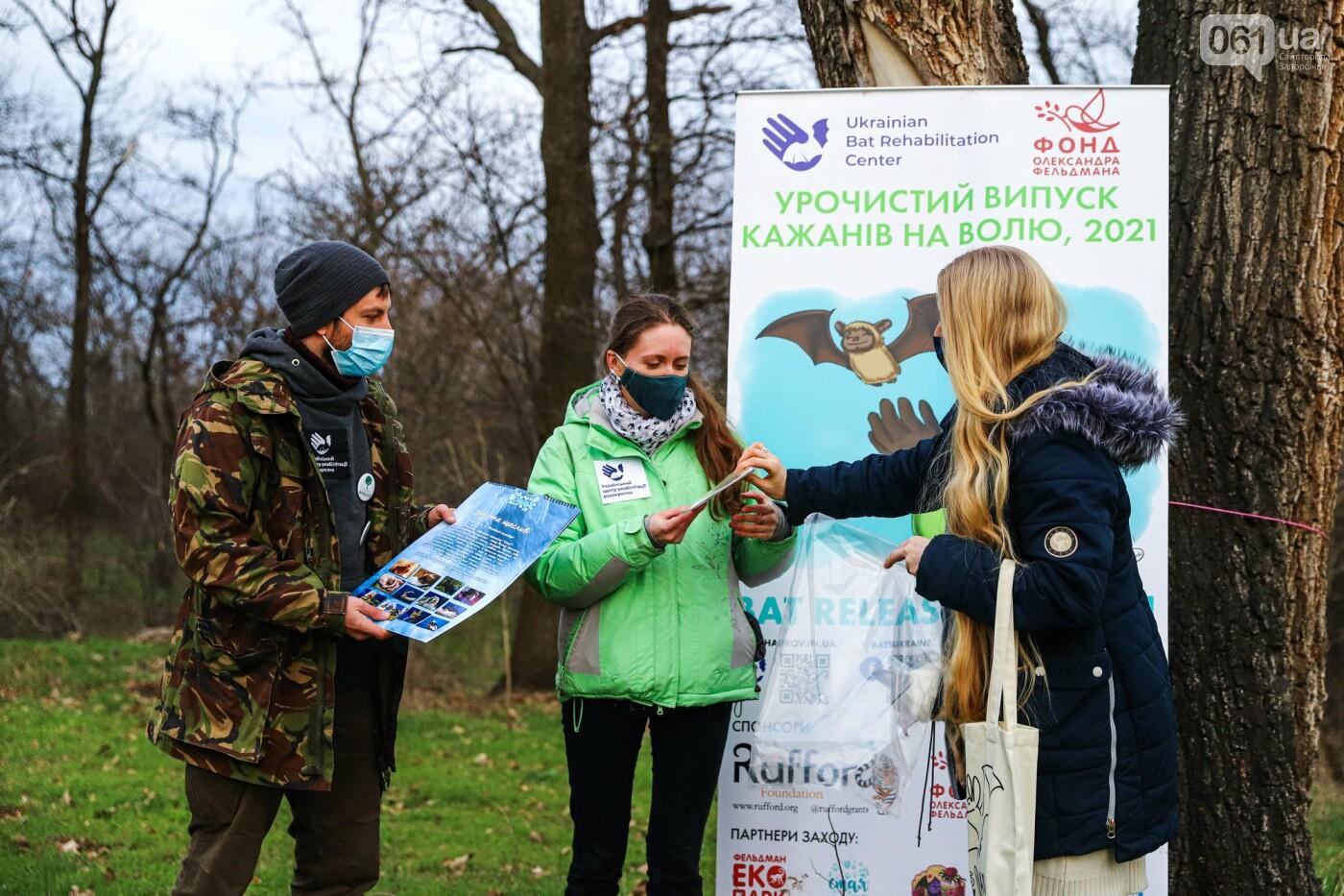 На Хортице выпустили более 700 летучих мышей, спасенных волонтерами, - ФОТОРЕПОРТАЖ, фото-14