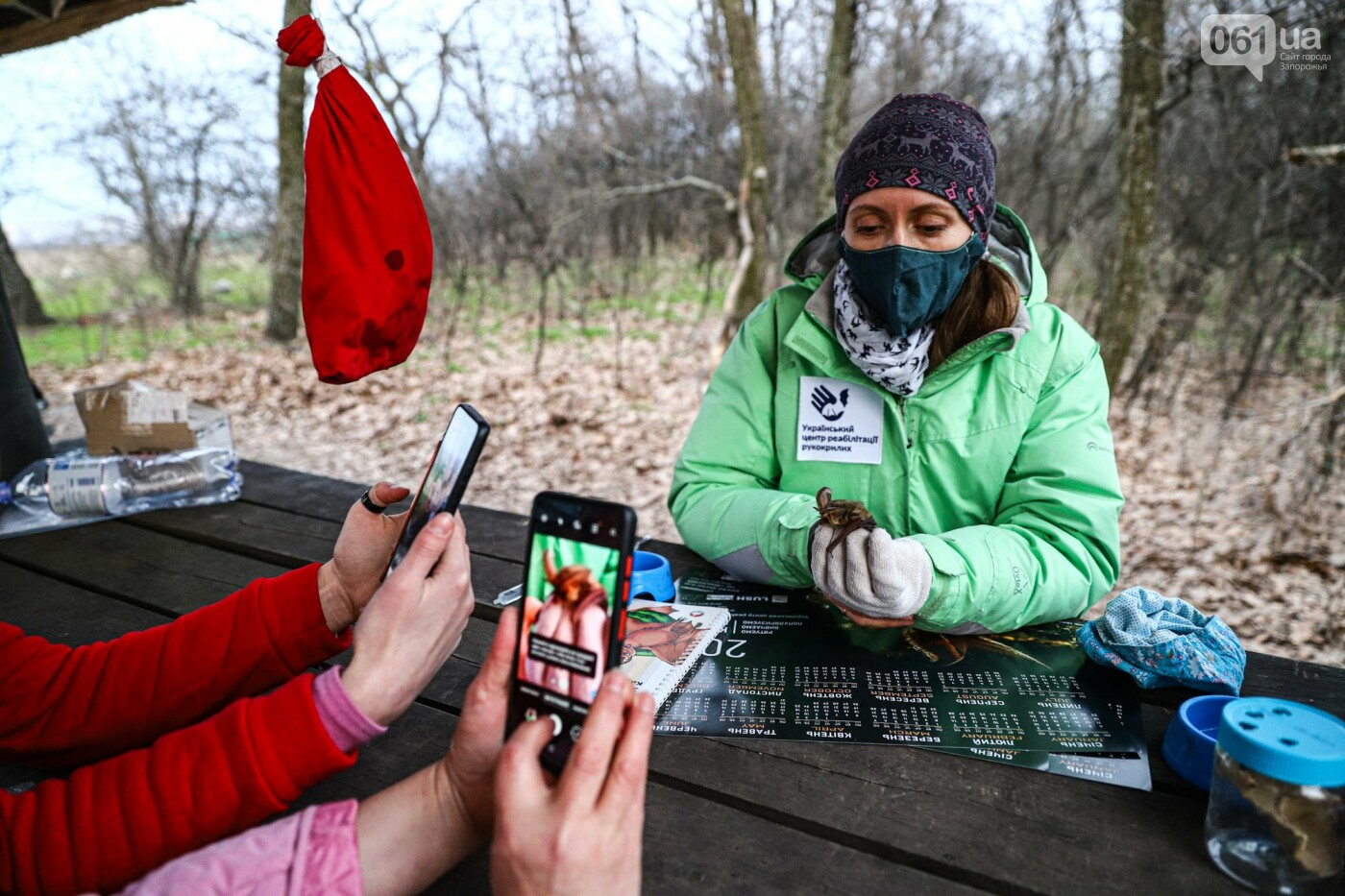 На Хортице выпустили более 700 летучих мышей, спасенных волонтерами, - ФОТОРЕПОРТАЖ, фото-1