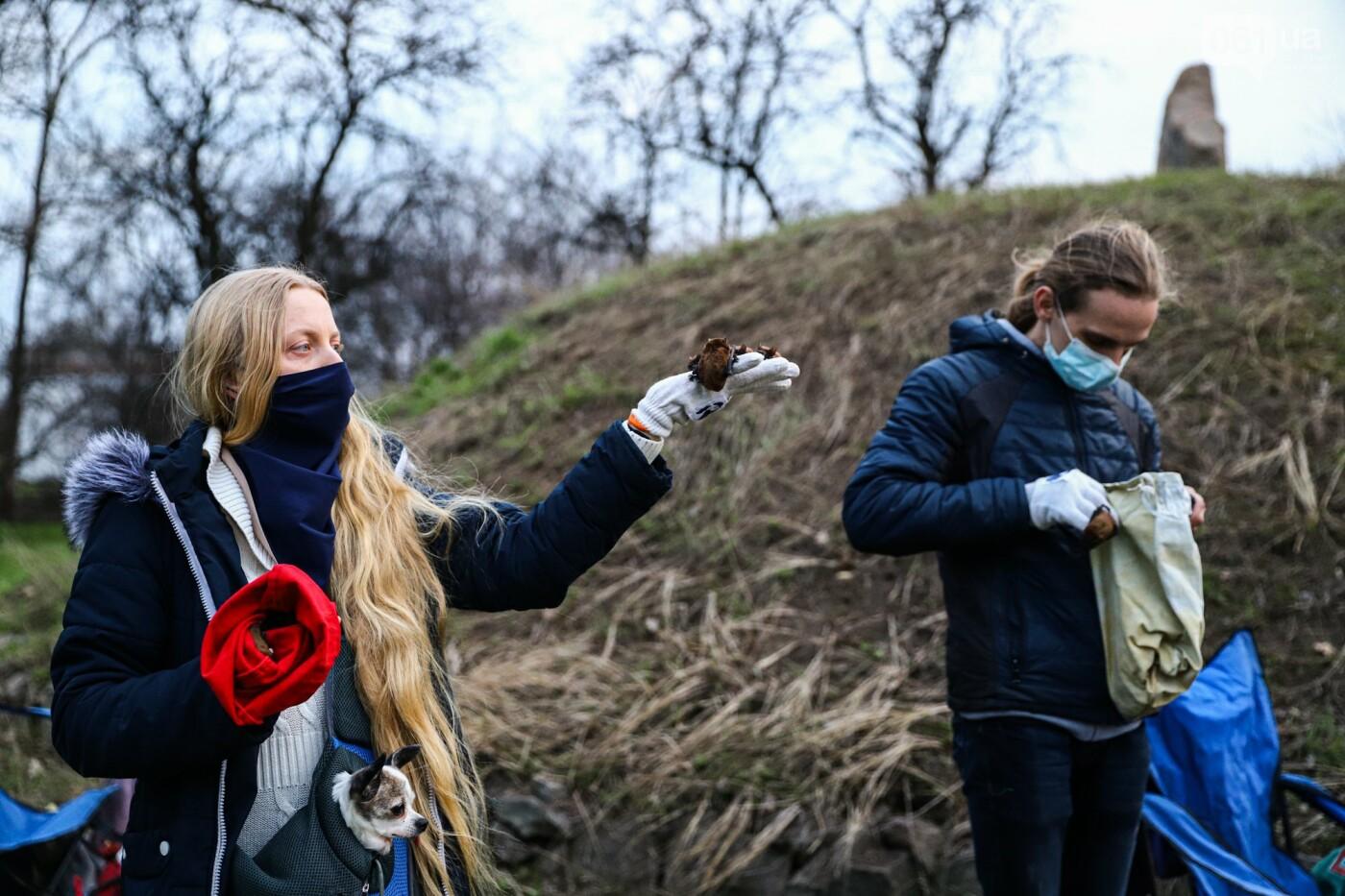 На Хортице выпустили более 700 летучих мышей, спасенных волонтерами, - ФОТОРЕПОРТАЖ, фото-19