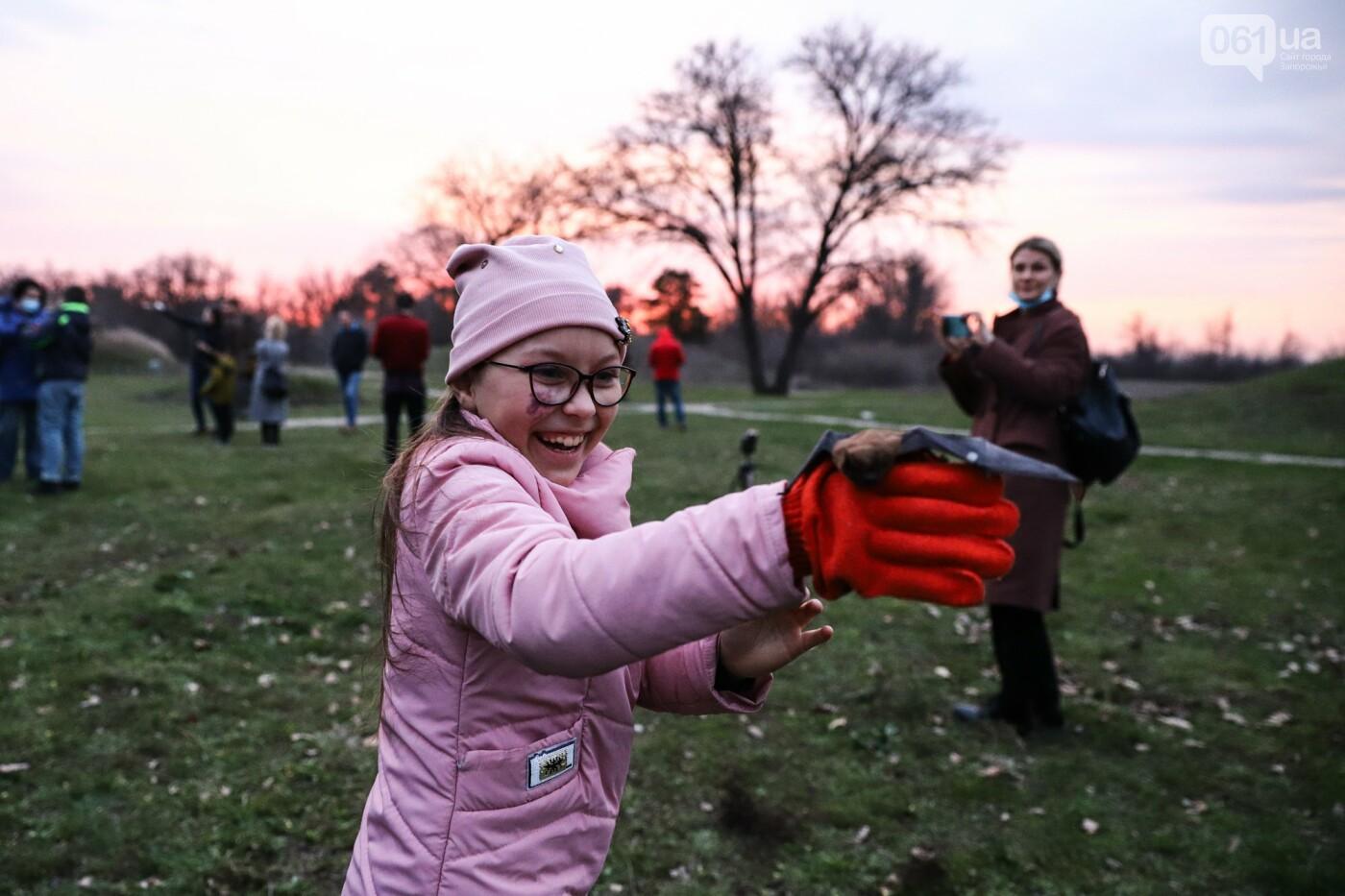 На Хортице выпустили более 700 летучих мышей, спасенных волонтерами, - ФОТОРЕПОРТАЖ, фото-21