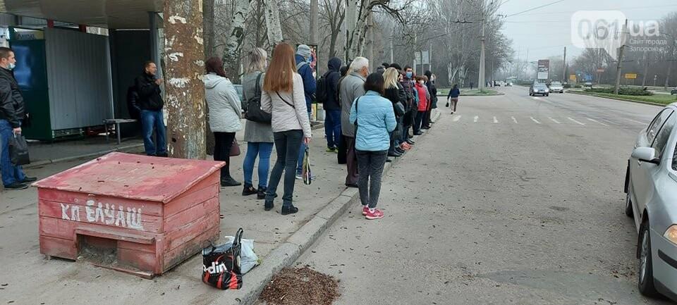 Огромные очереди и сотни людей на остановках: транспортный коллапс в Запорожье, фото-1