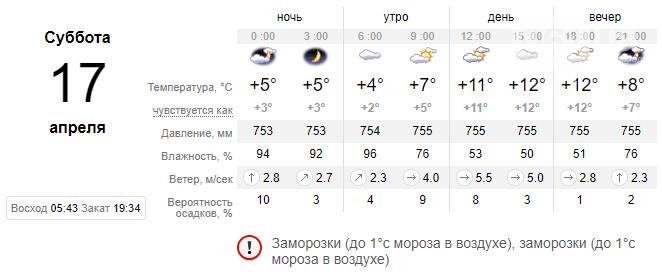 По Запорожью передают заморозки и туман на выходные, фото-2