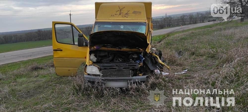 Заснул за рулем: в полиции сообщили подробности ДТП с маршруткой под Бердянском, фото-2