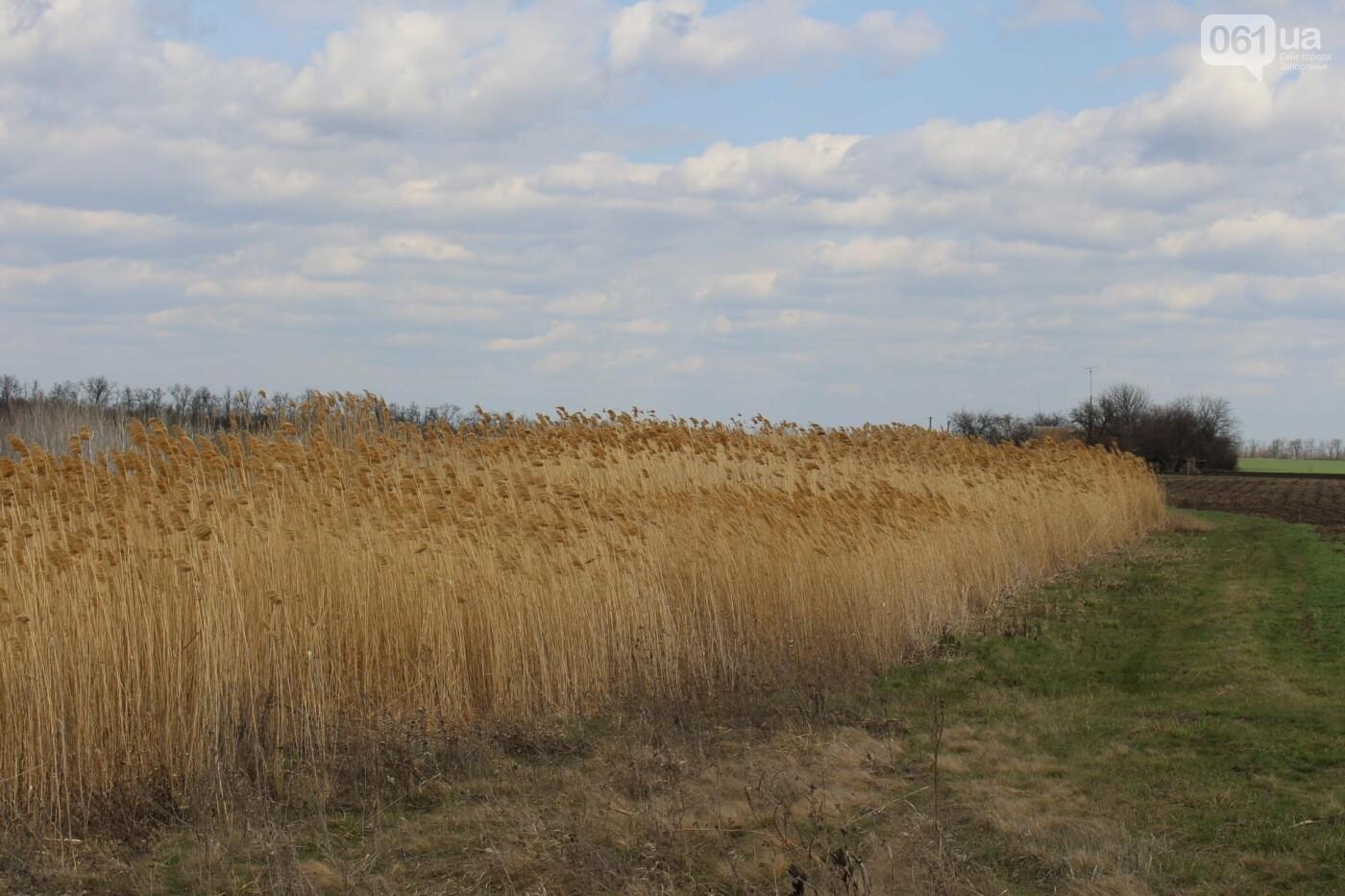 В Запорожской области от села, которое основали богатые селяне на землях меннонитов, осталось всего два дома , фото-4