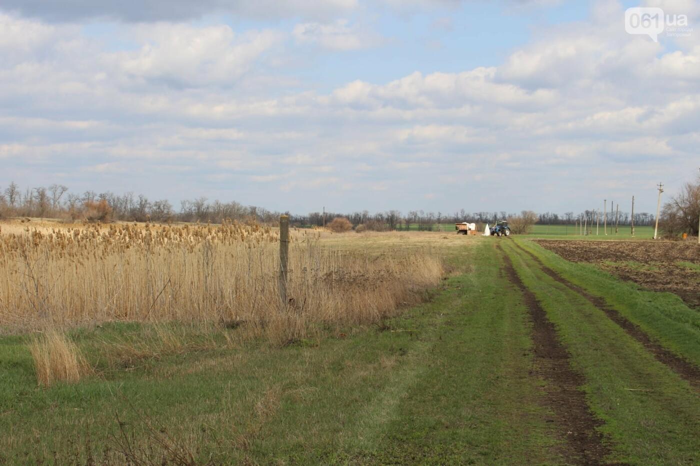 В Запорожской области от села, которое основали богатые селяне на землях меннонитов, осталось всего два дома , фото-3