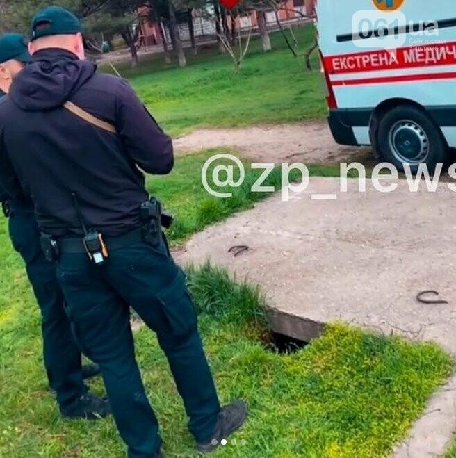 В запорожском парке ребенок провалился в яму под бетонными плитами, - ВИДЕО, фото-1